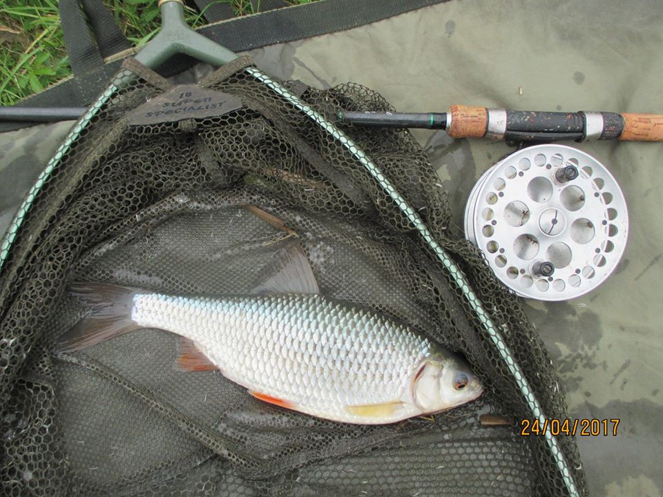 http://lintonangling.co.uk/images/newgallery/other/18055763_1736917646325692_5445983594456100230_o.jpg